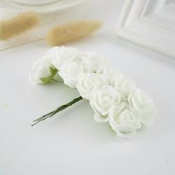 Erinevat värvi lilled